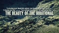 The-Beauty-of-the-Irrational
