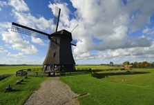 The Netherlands is a constituent country of the Kingdom of the Netherlands,...