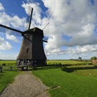 The Netherlands is a constituent country of the Kingdom of...
