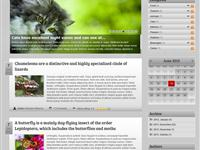 Blog display - BlogTwo light skin and template
